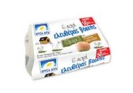 Χρυσα Αυγά 6άδα Ελευθέρας Βοσκης