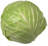 Λάχανο  Ελληνικό περίπου 1200 gr
