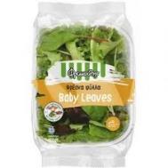 Φρεσκούλης  Σαλάτα Baby Leaves 100  gr