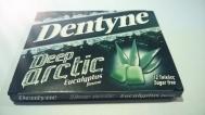 Dentyne Τσίχλα Deep Arctic Eycalyptos 16.8 gr