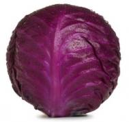 Λάχανο Kόκκινο Ελληνικό